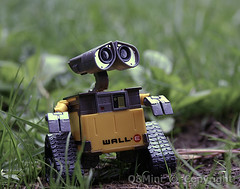 Wall - E / Explore tOday ... and its my birthday today also 29-08-08 (Hussain Naqi) Tags: world birthday uk summer favorite cute london film home canon garden movie eos big europe alone disneyland united kingdom disney explore animated kuwait milton keynes acmilan 2008 kw q8 hussain walle kuw my 400d q8mini 290808