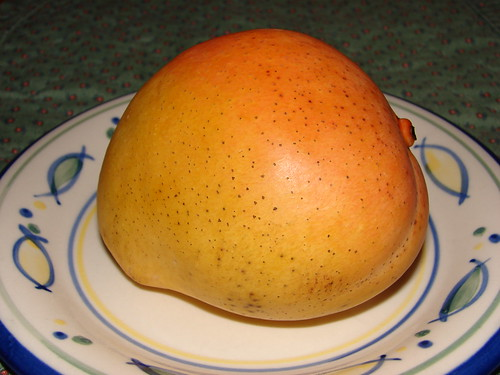 The first mango of the season