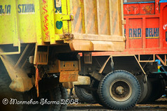 """Dhanno - Name of a famous character in Movie """"Sholey"""" (~Ms point of view~) Tags: india delhi transport 18135 nikond80 manmohansharma"""