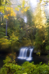 Early in Autumn (Dan Sherman) Tags: autumn fall waterfall pacificnorthwest buttecreek oregonwaterfalls scottsmills buttecreekfalls oregonwaterfall pacificnorthwestwaterfalls pacificnorthwestwaterfall crookedfingerrd scottsmillsoregon crookedfingerroad lowerbuttecreekfalls santiamforest