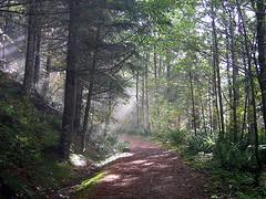 Autumn Hike in the Cascades (Mike Dole) Tags: washington cascades banderamountain iraspringtrail