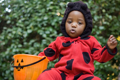Day 361/366 - Happy Halloween! (jakarachuonyo) Tags: baby funnyface color happy costume bokeh iso400 ladybug firsthalloween day361 primelens focallength50mm canonrebelxti projectkids365 aperturef20 shootingmodemanual akoth365 flashnone exposure1200sec