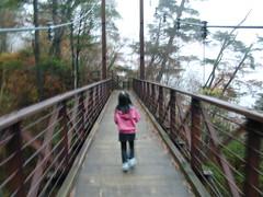 三頭大滝 滝見橋 檜原都民の森
