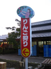 日光輕井澤東京5日 130