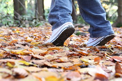 footloose in the forest (romorga) Tags: uk england leaves leaf jump central hampshire converse owl otter british bluejeans 2008 newforest allstars southernengland southeastengland digitalcameraclub newforesthampshire iamflickr romorga centralsouthernengland newforestengland newforestsoutheastengland newforesthampshireengland