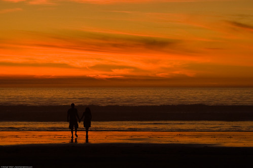 couple-hold-hands-in-silhouette-at-sunset-16nov2008