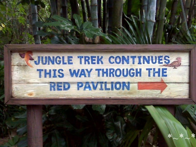 IMG01438-Maharaja-Jungle-Trek-That-Way
