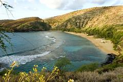 Hanauma Bay Marine Preserve (Hawaii.com) Tags: hawaii oahu honolulu hanaumabay