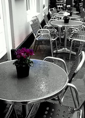 gloomy day, spot of brightness (venetia 27) Tags: december chairs oxford tables raining cyclamen pizzaexpress goldencrossyard