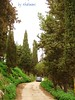 Libya - Cyrene town - The green mountain
