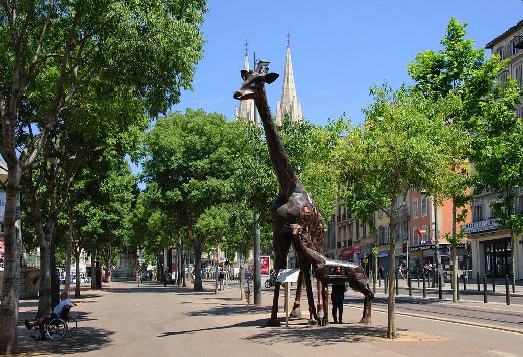Zarafa, la Girafe-Livre, Marseille