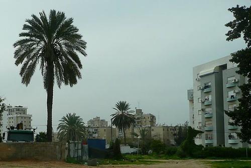 Lod Israel