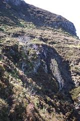 Eigg 2004-456.JPG (SueWalkerWhite) Tags: scotland highlands eigg smallisles