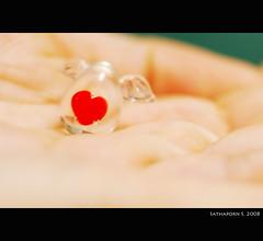 Heart.. (deer027) Tags: love glass hand heart nikond50 human 50mmf18