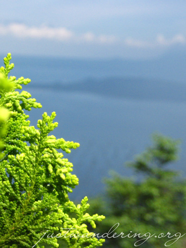 Greens and blues of Tagaytay