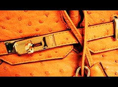 HERMES..So rich, So pretty.. (Drop Dead Gorgeous..) Tags: orange bag ostrich purse hermes birkin