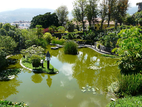 Gardens in Santa Cruz, Tenerife - a photo on Flickriver
