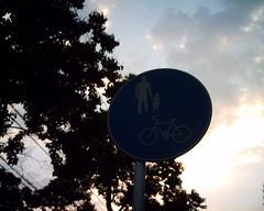 【写真】VQ1005で撮影した朝の風景(道路標識)