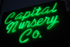 20080712 Capital Nursery Co.