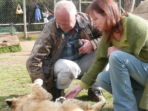 Lynne en Piere aaien de leeuwenwelp.