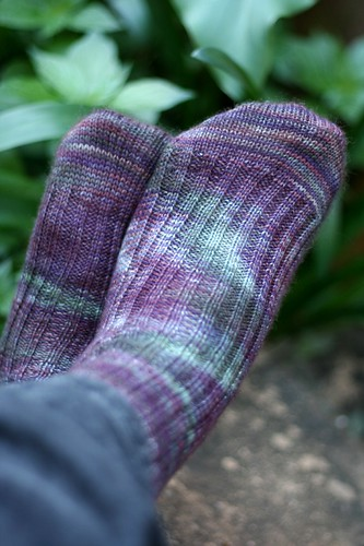 Passionfruit Socks