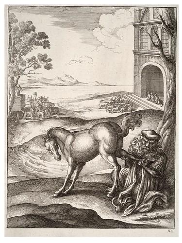 15- El leon y el caballo