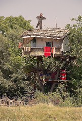 SerbianTreeHouse