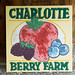 Charlotte Berry Farm