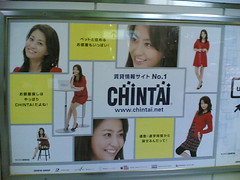 20080114 CHINTAI 小林麻央