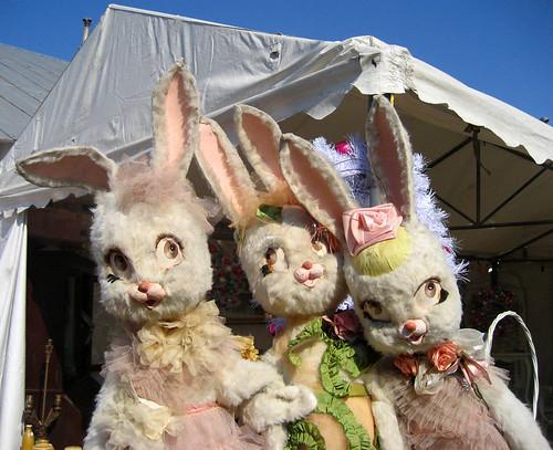 round top bunnies