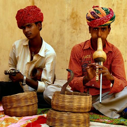 נחשים בהודו