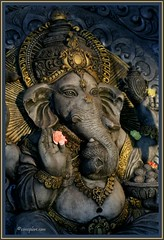 Om Maha Ganapataye Namaha (VIM'S PLACE) Tags: elephant god ganesh elephantgod hinduism ganapati obstacles tucsonaz krishnatemple ganapathi removerofobstacles lordofobstacles