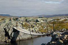summerbridge (tobeplugged) Tags: norway norwegen berge landschaft ort hardangervidda brcke br゚cke
