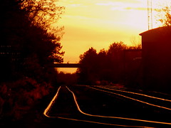 Sundown on the  Tracks (**Ms Judi**) Tags: lighting wood bridge trees sunset black tower leaves yellow golden weeds woods glow sundown post path timber country traintracks tracks brush rails spikes crooked gravel peshtigo msjudi platinumphoto crookedtracks theunforgettablepictures peshtigowisconsin goldstaraward judistevenson trackssundown railroadpost