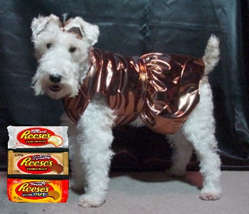 SNICKERS NEW YEARS EVE 2007 B X
