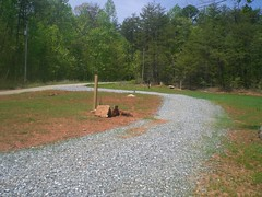 Lake place 3 (Realtorldy) Tags: virginia oldwomanscreek leesvillelake flattopcove grenta
