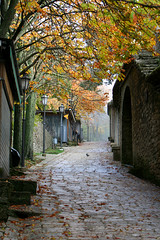 San Marino (iancorrigan) Tags: travel italy fall leaves ian sanmarino corrigan