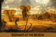 elephants at the museum (Kris Kros) Tags: california africa ca usa history museum photoshop river photography la losangeles los high nikon dynamic natural angeles kenya scene safari socal kris elephants d200 waterhole tana 2008 range hdr kkg savanna the cs3 photomatix kros kriskros 5xp at theperfectphotographer kkgallery
