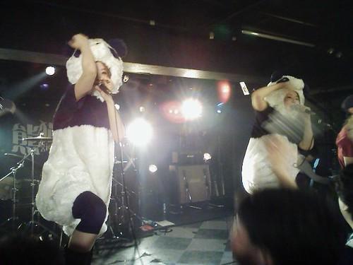 熊猫xiongmaoワンマン