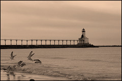 Lighthouse and Gulls