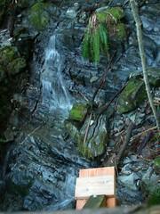 Best view of falls from Stupid Behemoth Bridge
