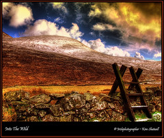 Into The Wild. (Irishphotographer) Tags: ireland sunset sky irish mountain mountains art nature landscape freedom images explore sureal hdr mournemountains irishart kinkade intothewild snowcoveredmountains beautifulireland hdrunlimited nakedbeauty colorphotoaward stunningviews flickrdiamond imagesofireland colourartaward irishmountains walkinginireland picturesofireland flickrlovers kimshatwell irelandkimshatwell irishcalender09 irishphotographer irishcountryscene wwwdoublevisionimagescom hillwalkinginireland climbthatmountain mwqio breathtakingphotosofnature beautifulirelandcalander wwwdoublevisionimageswebscom