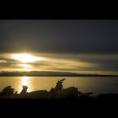 rebecca sunrise. (kvdl) Tags: morning beach sunrise island dawn driftwood quadra quadraisland discoveryislands rebeccaspit canonef1740mmf40lusm kvdl