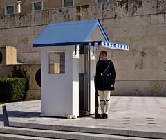 It's tres chic to be Greek! (Tenia Prokalamou) Tags: evzones presidentialguard tsoliades presidentialmansion tsarouhi ringexcellence dblringexcellence tplringexcellence nikond3100 eltringexcellence infinitexposure
