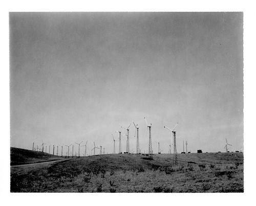 Windmills On Altamont Pass Road
