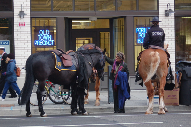 le_ppb_horses1