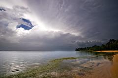 Playa de Portillo (Guillermo Armenteros) Tags: seascape beach sand dominicanrepublic stormclouds lasterrenas coconuttrees portillo