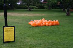 Ballonger i dalen