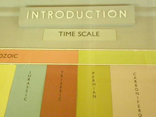 Introduction: Time scale