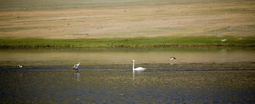 Hoopers lake